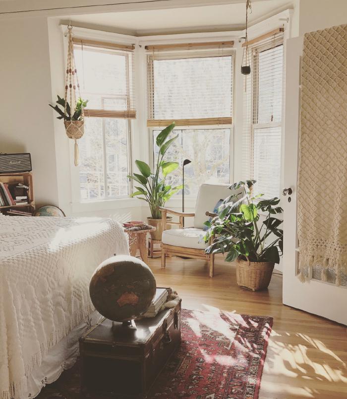 初めてでもカンタン!<br>観葉植物でステキな部屋づくり